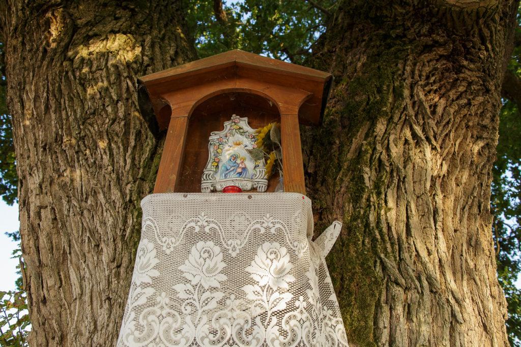 La Madonna di Bassantina.
