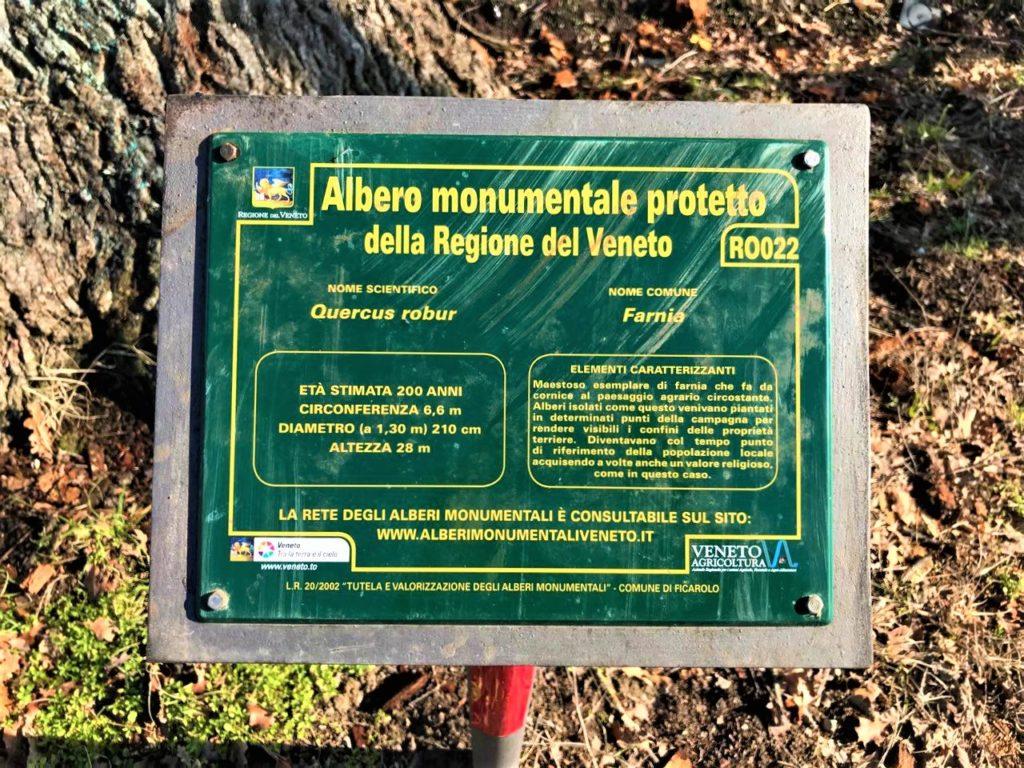 Targa della Regione Veneto